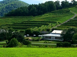 DelFosse Vineyard, Virginia