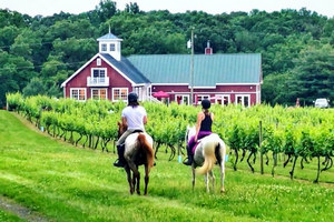Philip Carter Winery horseback riding