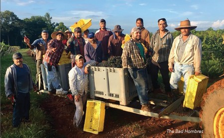 Vineyard Team, Barboursville Vineyards