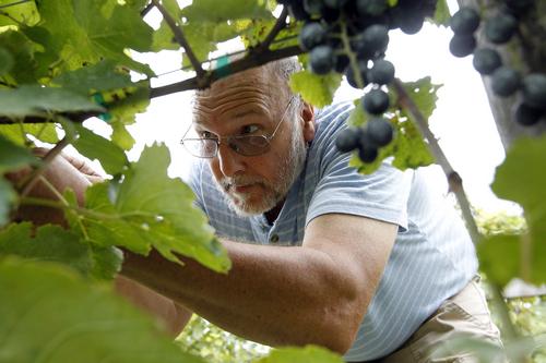 Warner Hambsch, Loving Cup Winery