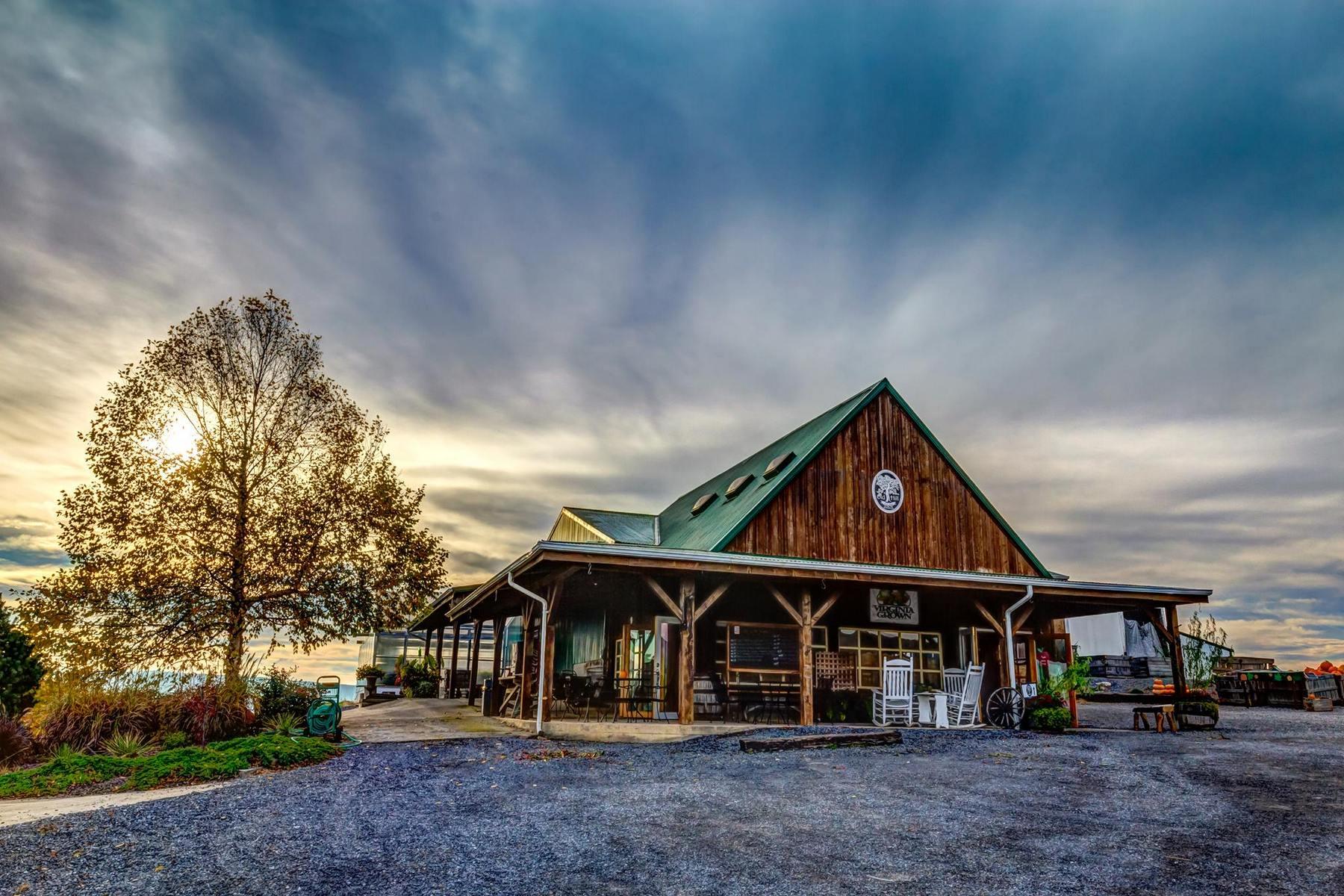 Old Hill Cider, Virginia